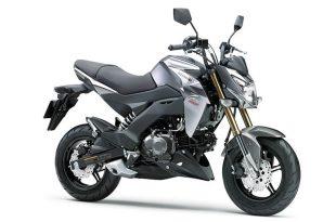 ภาพ Kawasaki Z125/Z125PRO สีเงิน