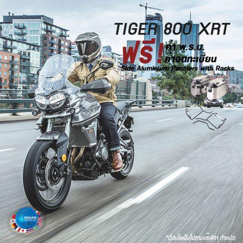 Tiger-800XRT